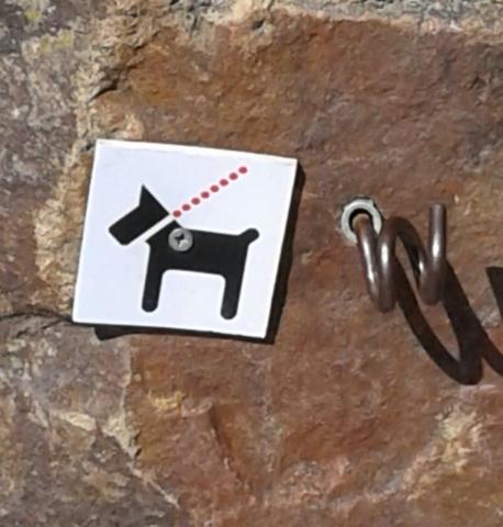 Здесь все удобно для людей, зверей и собак