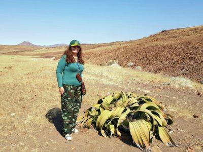 Необычный растительный мир Намибии
